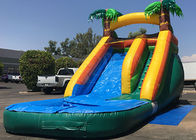 Outdoor Summer Cool Inflatable Water Slide And Pool 9Mx 3M X 5M Easy Installation